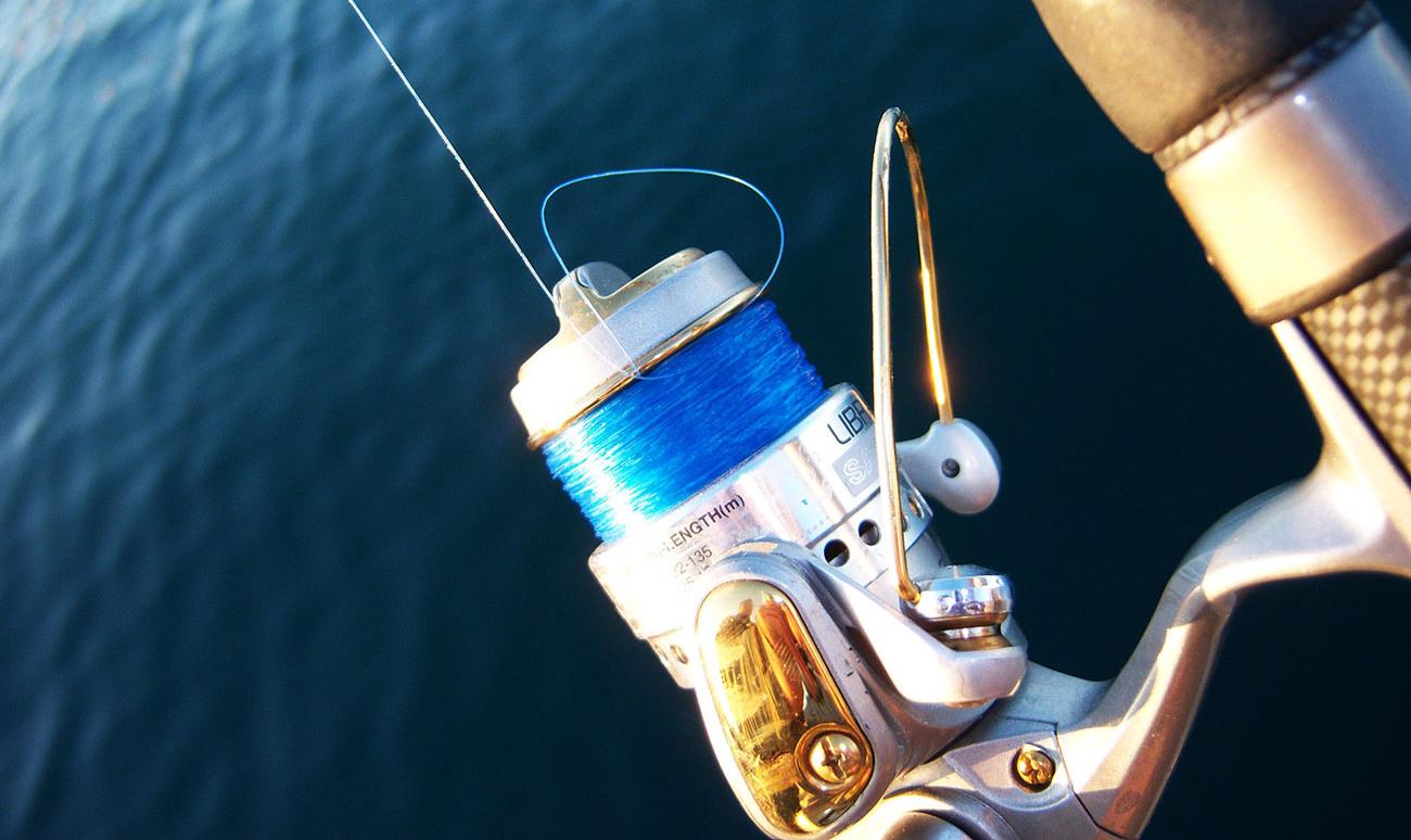 Best Spincast Fishing Reels