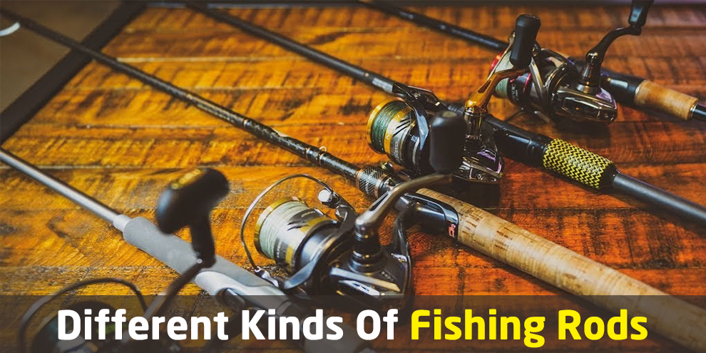 Different Kinds Of Fishing Rods